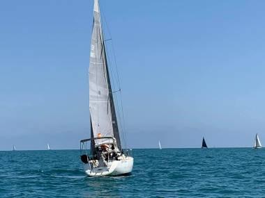 Mayor North Sails 3di Velas/Toldos