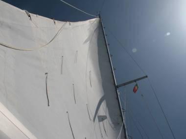 Main sail 10,00x4,50 Dacron Velas/Toldos