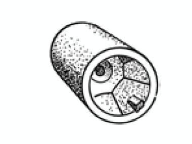 Anodo Hexagonal-Radice Equipo cubierta