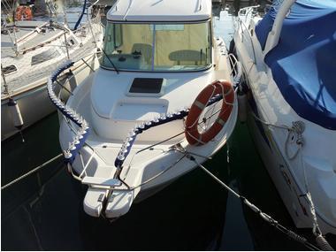 Anti gaviotas pasamanos embarcaciones Equipo cubierta