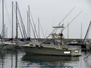 Tiara Yachts Tiara 36