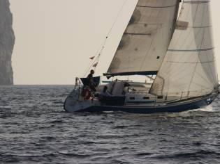Ronautica  Ro 300
