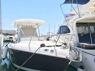 Donzi 35 ZF Daytona en Martinica | Embarcaciones de crucero