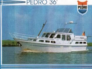 Pedro 36