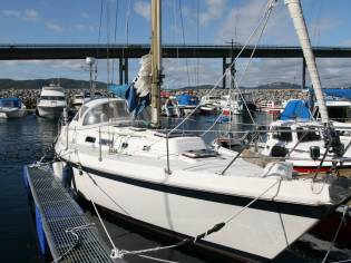 Contest Yachts 34