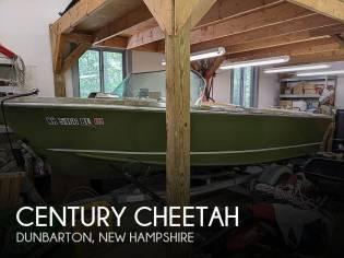Century Cheetah