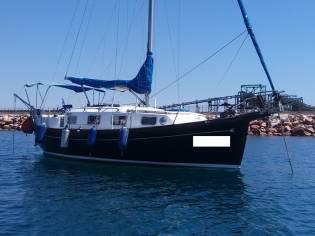 Myabca Delfin 31