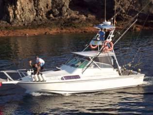 Boston Whaler 31 Sport Fisher man