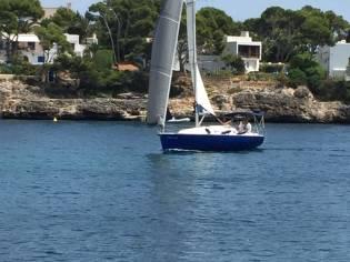 Ro Nautica 330