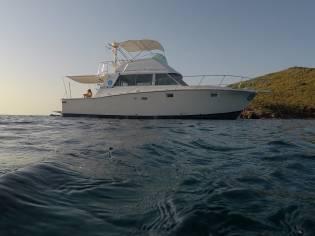 Bertram Yacht 38