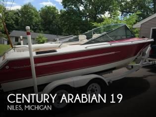 Century Arabian 19
