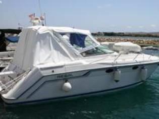 Regal C 320- NEUE MOTOREN Motorboot