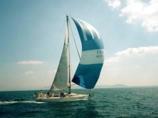 Oyster Lightwave395 395