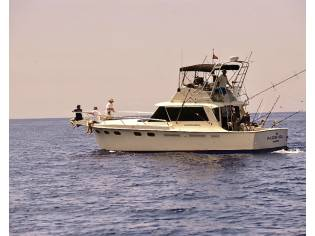 Hatteras Contvertable 41 convertible