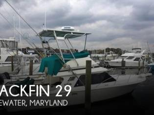 Blackfin 29 Sportfisher
