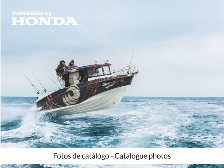Barracuda 8