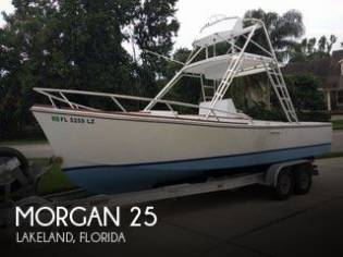 Morgan 25