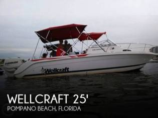 Wellcraft 240 Coastal Walkaround
