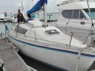 Gib Sea 24.2