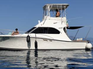 Luhrs 32 Convertible