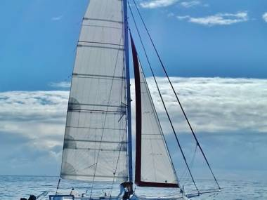 catamaran  rush elite 35 sport