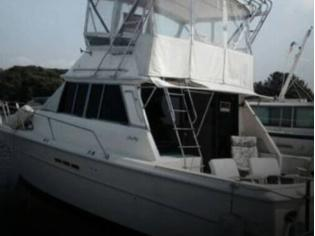 Sea Ray SRV 390