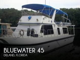 Bluewater 45