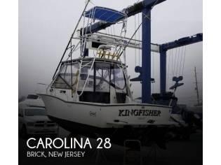 Carolina 28