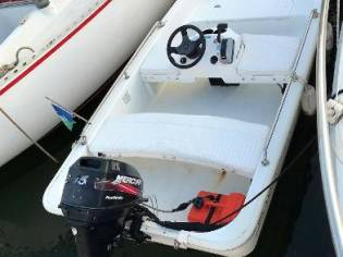 Boston Whaler 110 Tender
