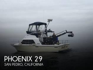Phoenix 29