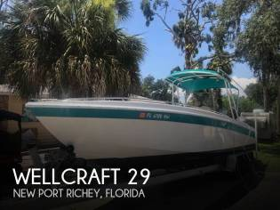 Wellcraft 29