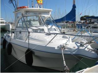 Quicksilver Offshore 900