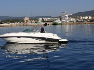 CHAPARRAL 235 SSI