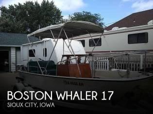 Boston Whaler Nauset 17