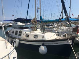 Myabca Delfin 28
