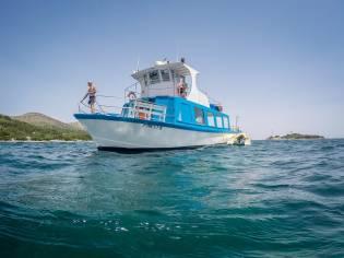 barco de pasajeros, golondrina 80 pax.