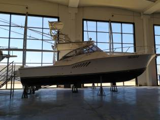 Albemarle 410 XF