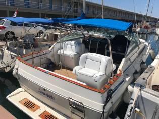 Sea Ray 310 SS