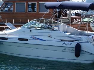 Sea Ray 230 DA Sundancer Ltd.