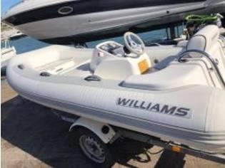 Williams Jet Tenders 325