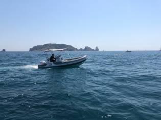 MV Marine 500