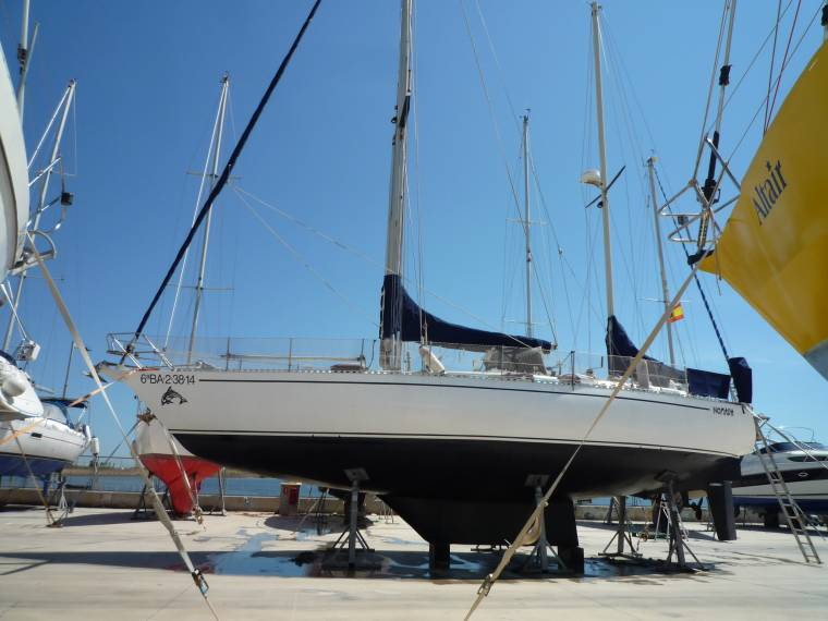 Archimede 43