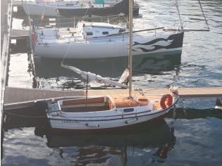 taylor 50 velero