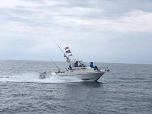 Fisher WILOW 640
