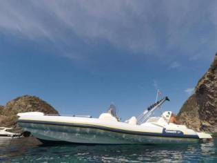 Marlin 29