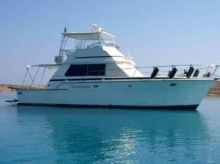 Bertram 42 Flybridge Motor Yacht