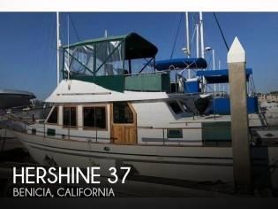 Hershine 37