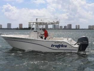 Sea Fox 256 CC