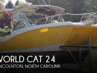 World Cat Power 246 DC