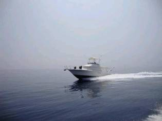 Sea Ray Amberjack 31